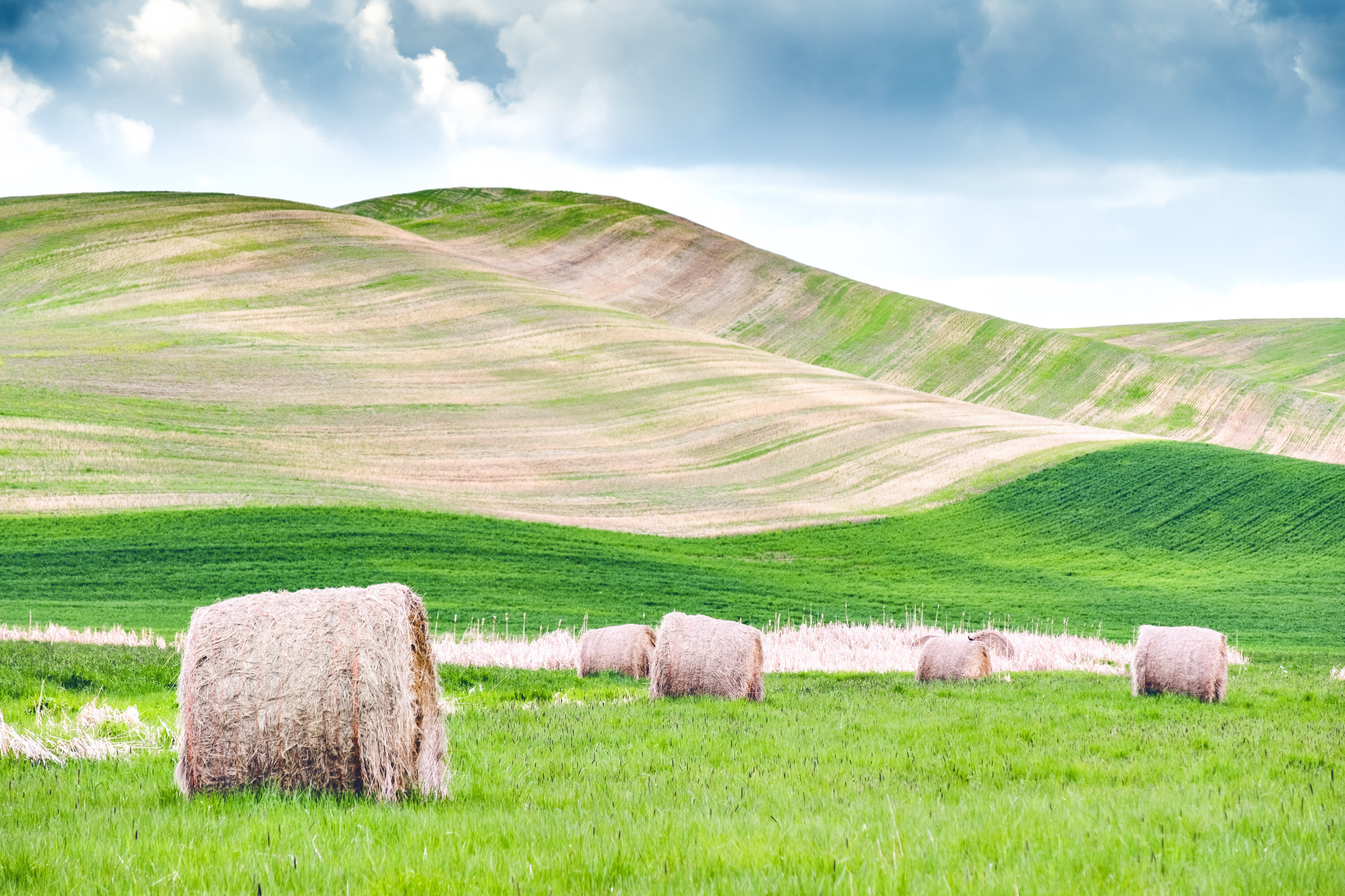 Several Hay Rolls on Grass Field Within Mountain Range