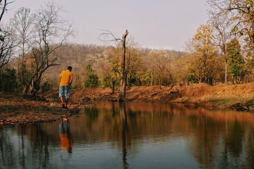 Man in Yellow Shirt and Blue Denim Shorts Standing on Brown Tree Branch on River during