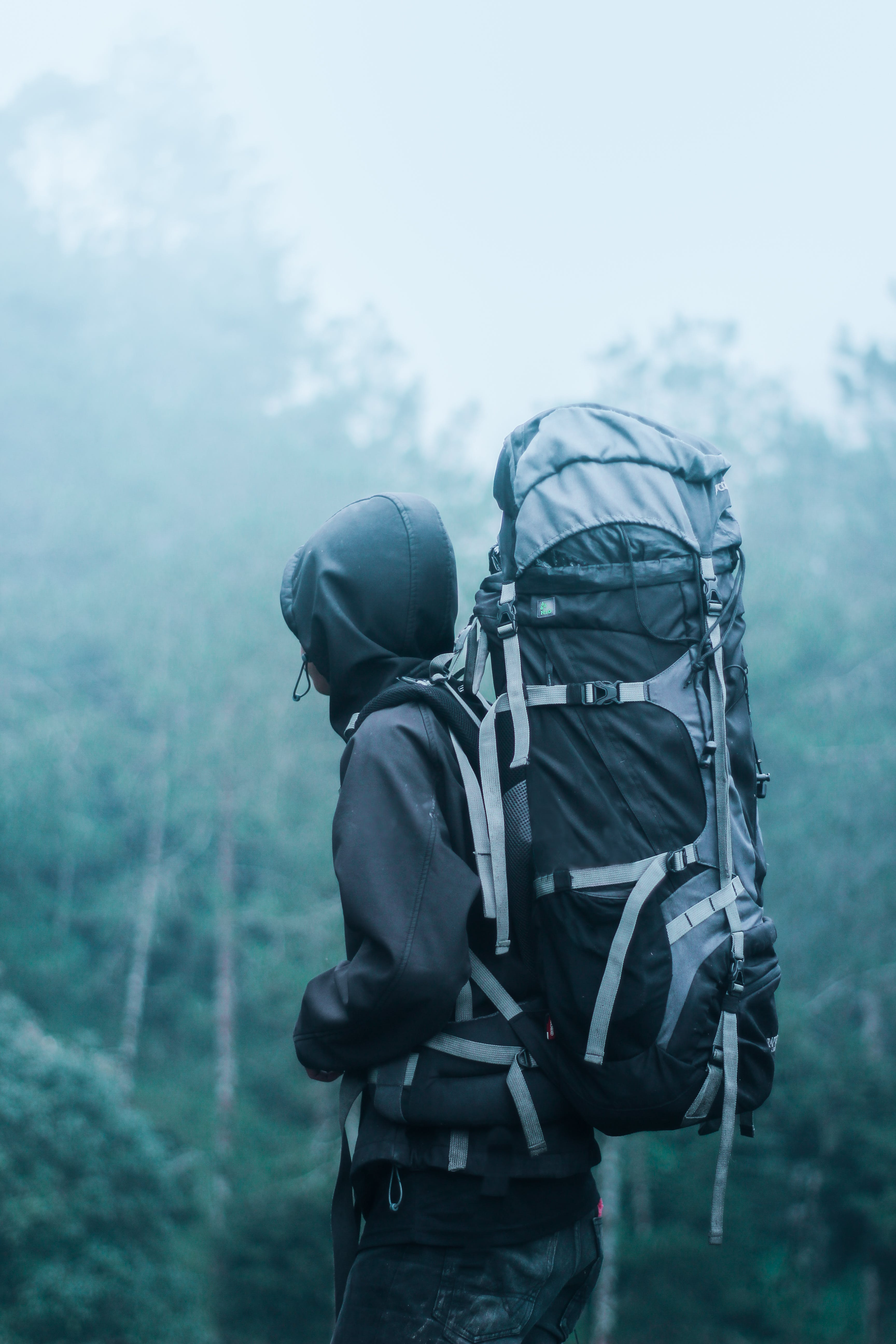 Man Wearing Black Hoodie Carries Black and Gray Backpacker Near Trees during Foggy Weather