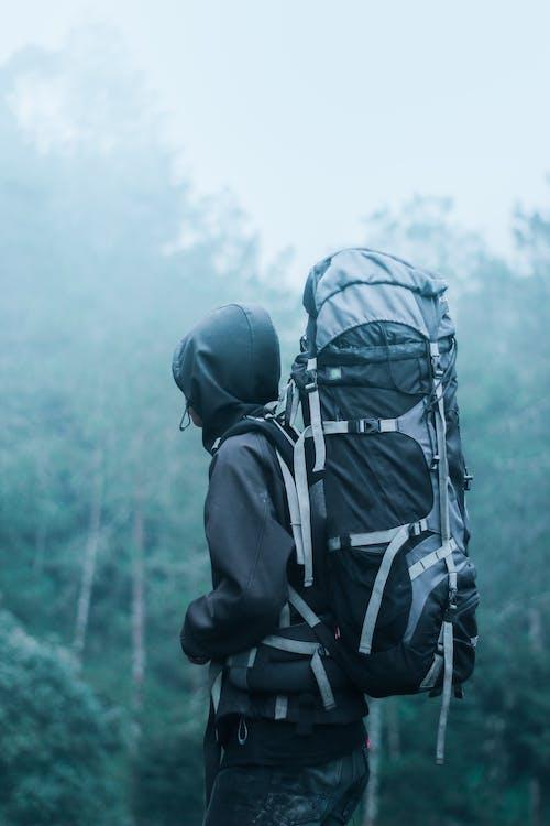adult, alpinist, aventură