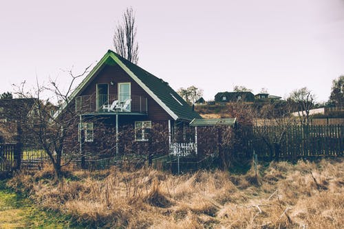 Free stock photo of denmark, golden yellow, grass, red house