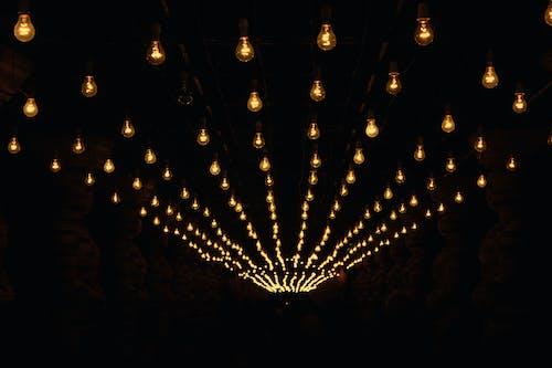 Free stock photo of bulb, night