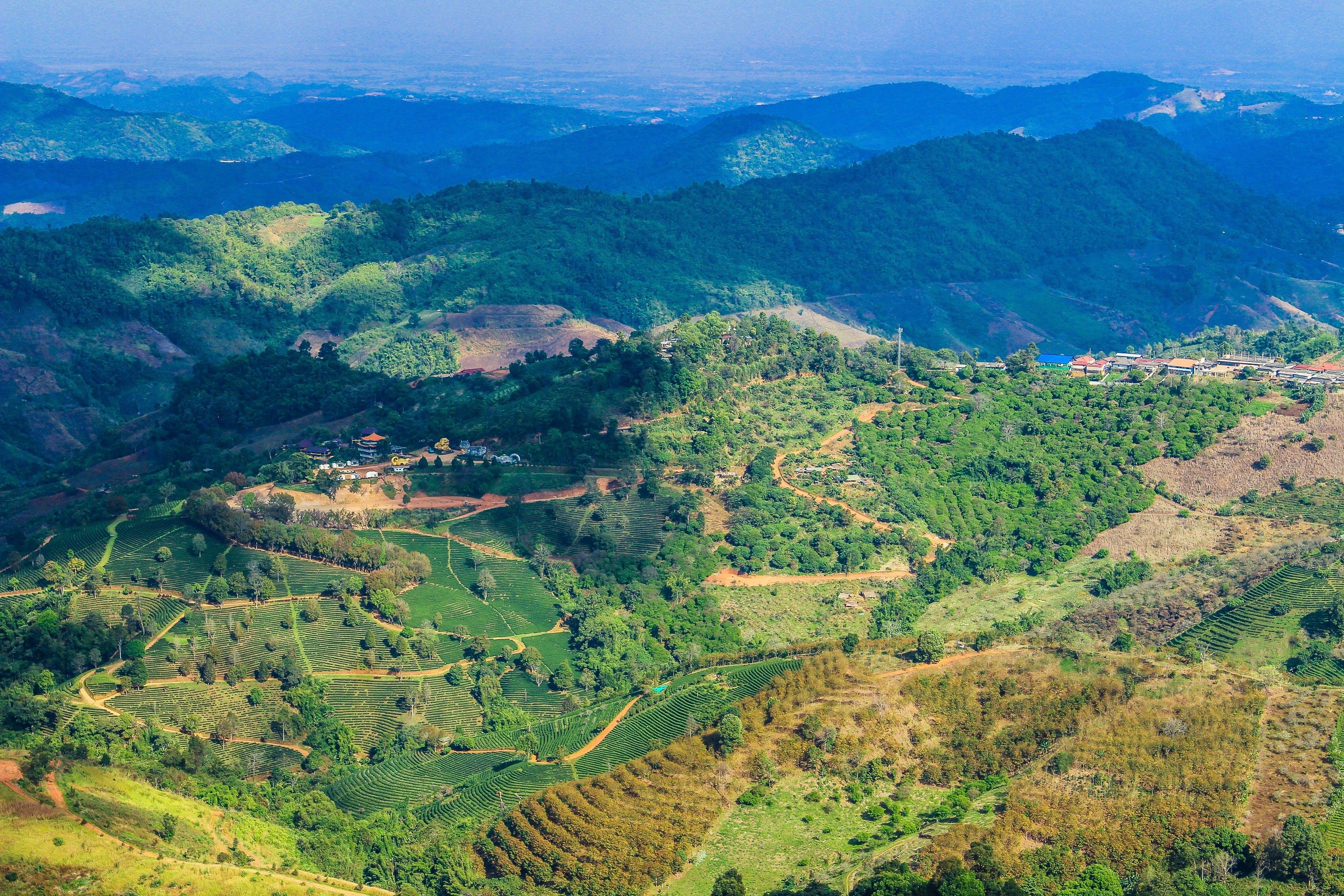 Darmowe zdjęcie z galerii z domy, drzewa, góry, kolory