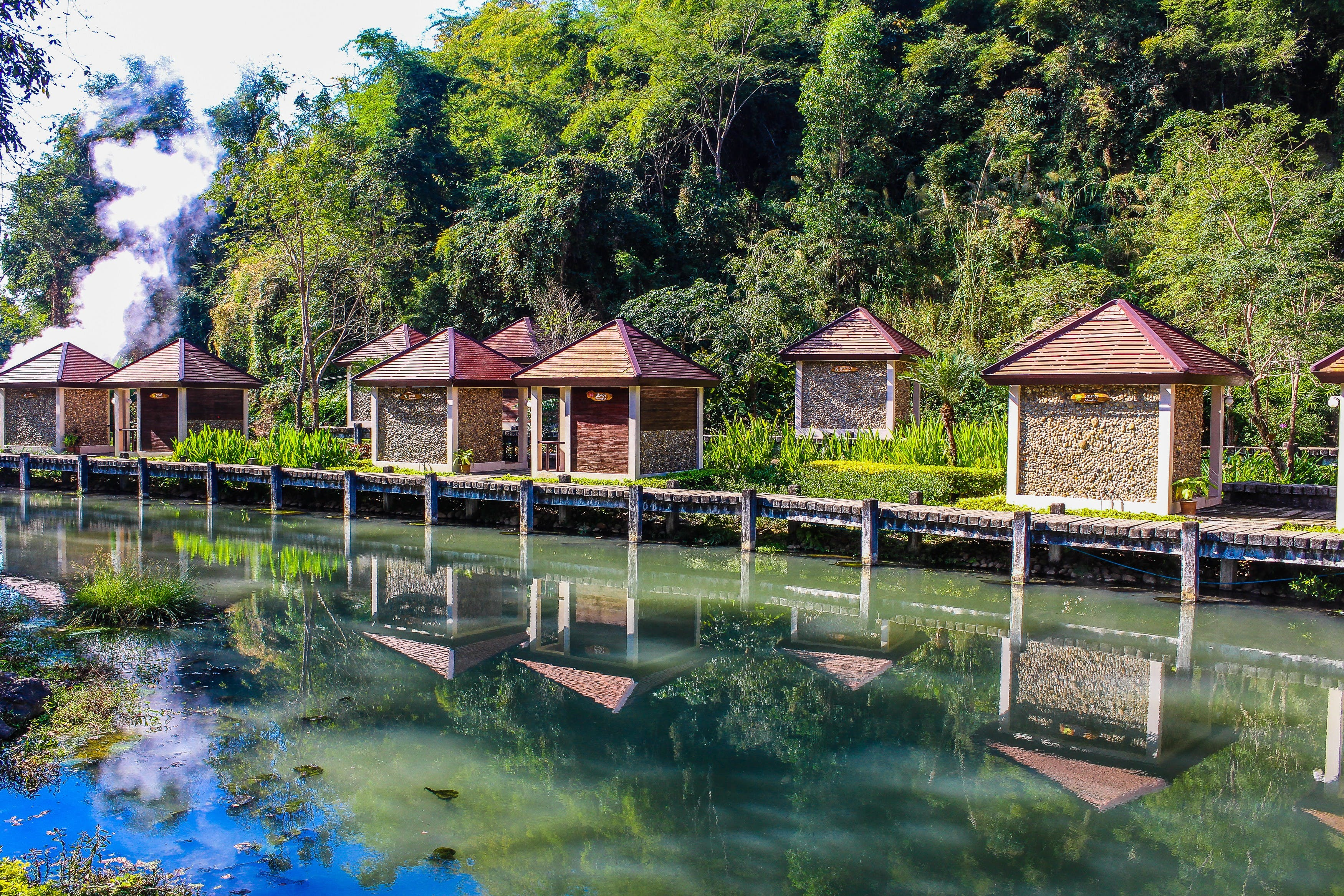 Kiosks Near Calm Body of Water Surrounded by Tall Trees at Daytime