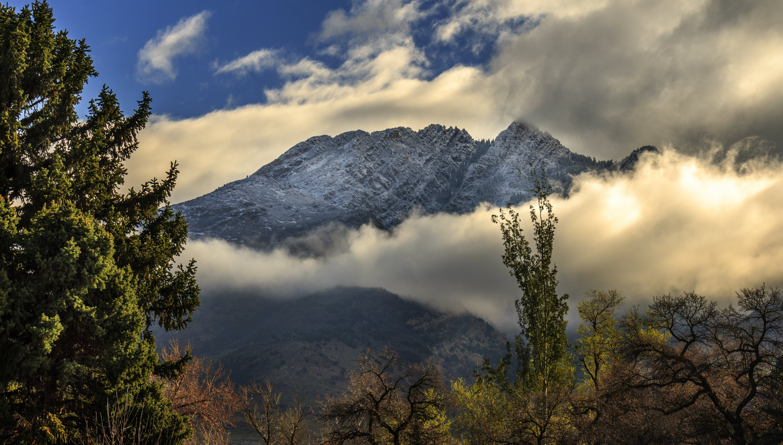 Kostenloses Stock Foto zu bäume, berg, bewölkt, gipfel