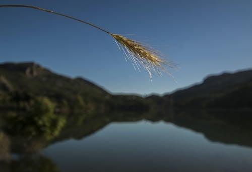 Fotobanka sbezplatnými fotkami na tému krajina, odlesk, odraz, terén