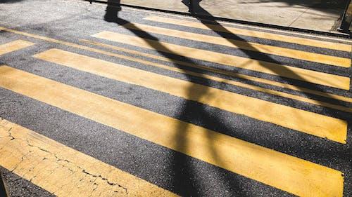 アスファルト, アスファルト道路, ガイダンスの無料の写真素材