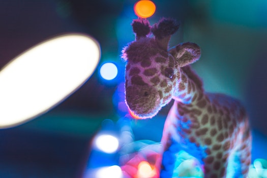 Giraffe Plush Toy Close Up Photo
