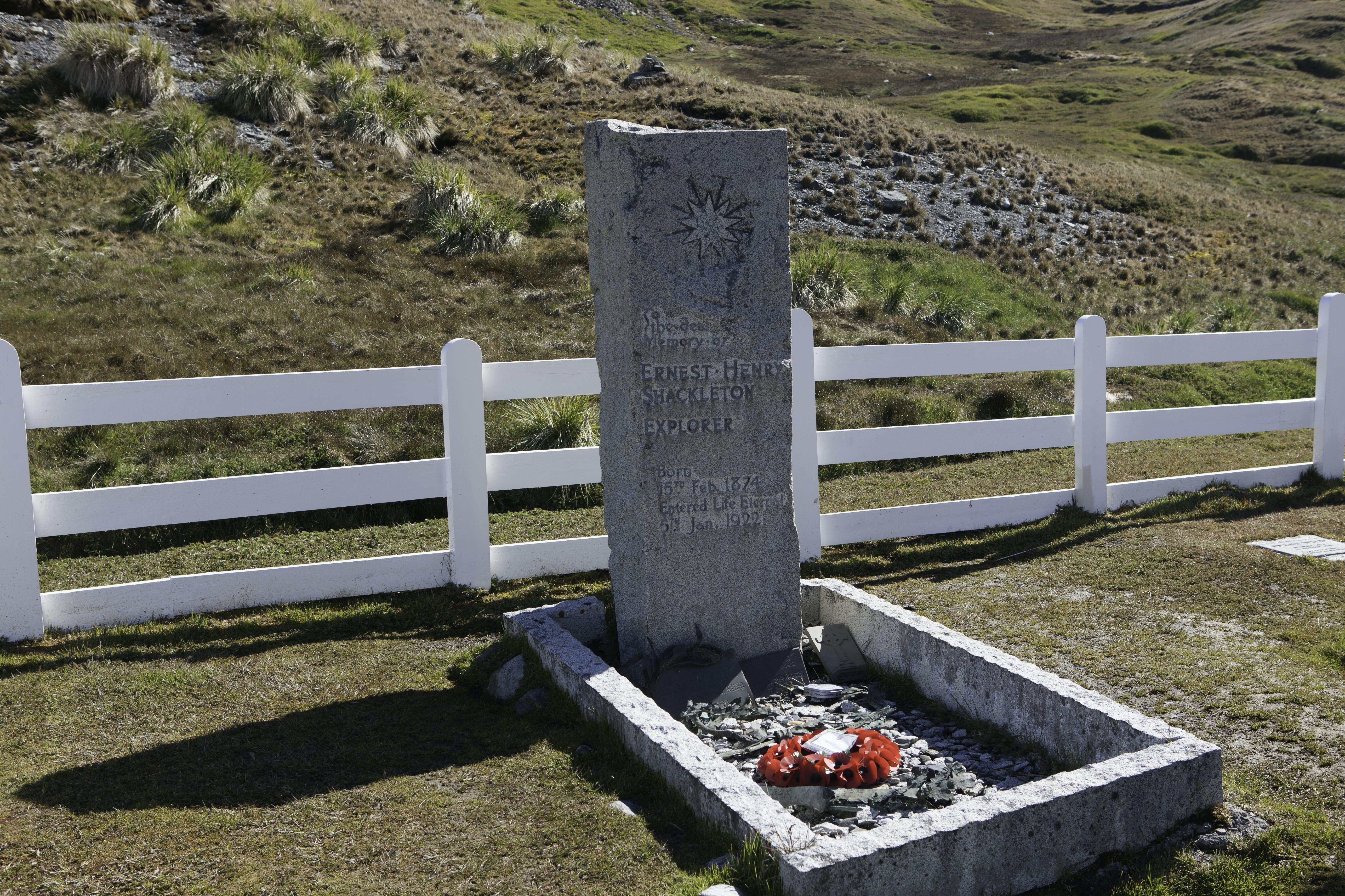 Free stock photo of cemetery, Ernest Shackleton, explorer, grave