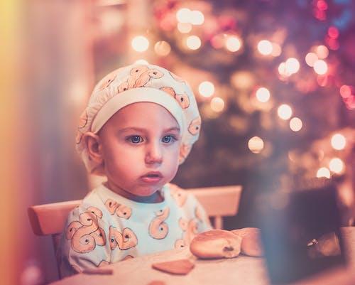 Gratis stockfoto met jongen, kerstboom, Kerstmis, kleuter