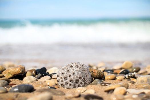 Kostenloses Stock Foto zu meer, strand, ferien, sand