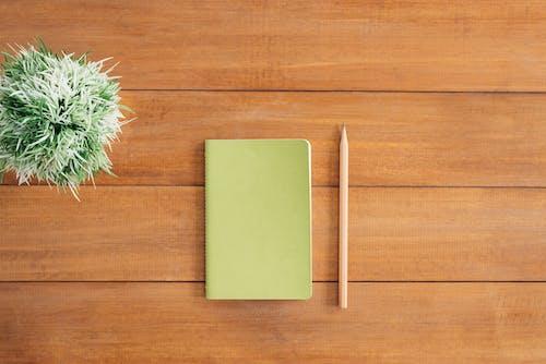Ảnh lưu trữ miễn phí về bàn, bảng, bút chì, cây cảnh