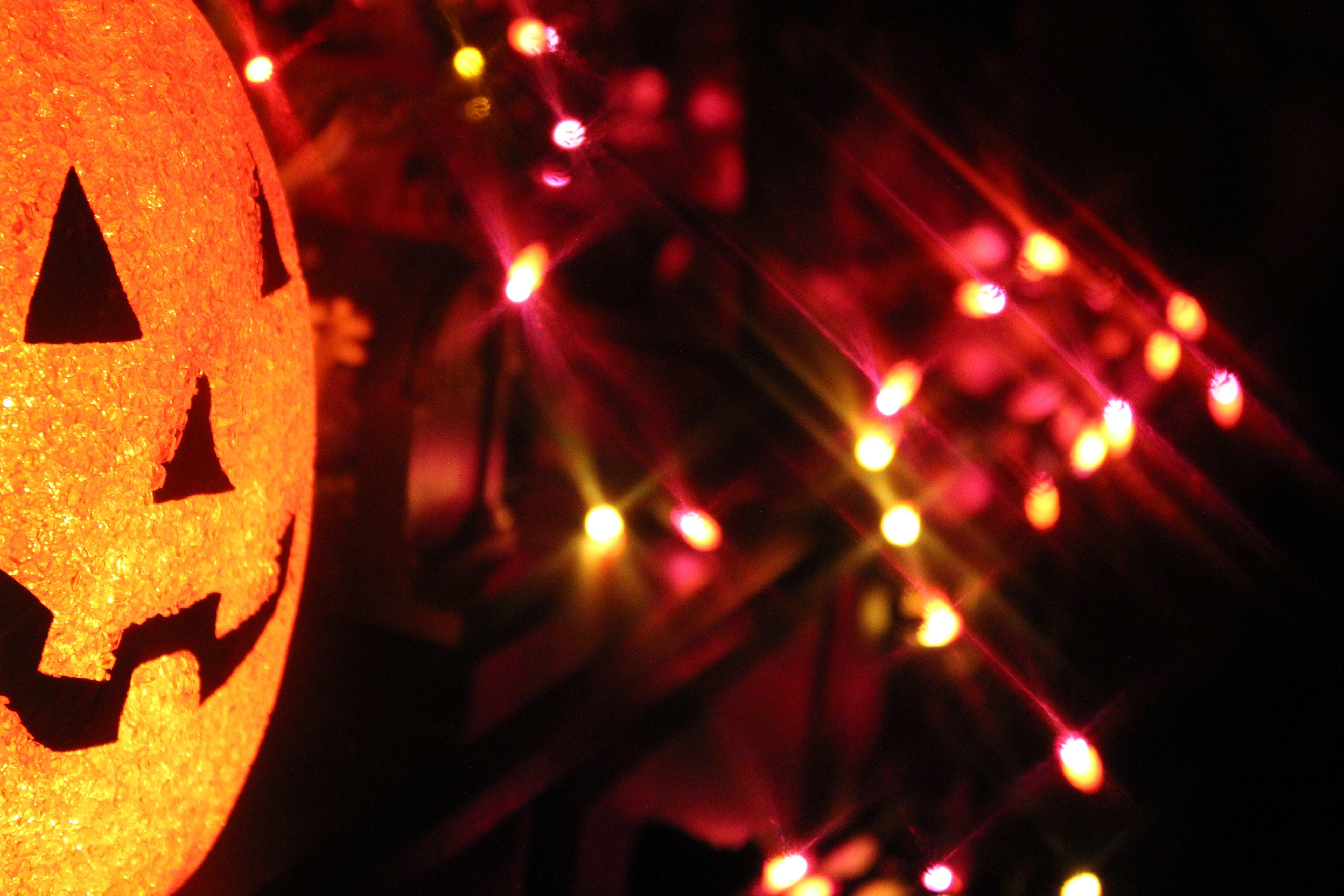 Free stock photo of halloween