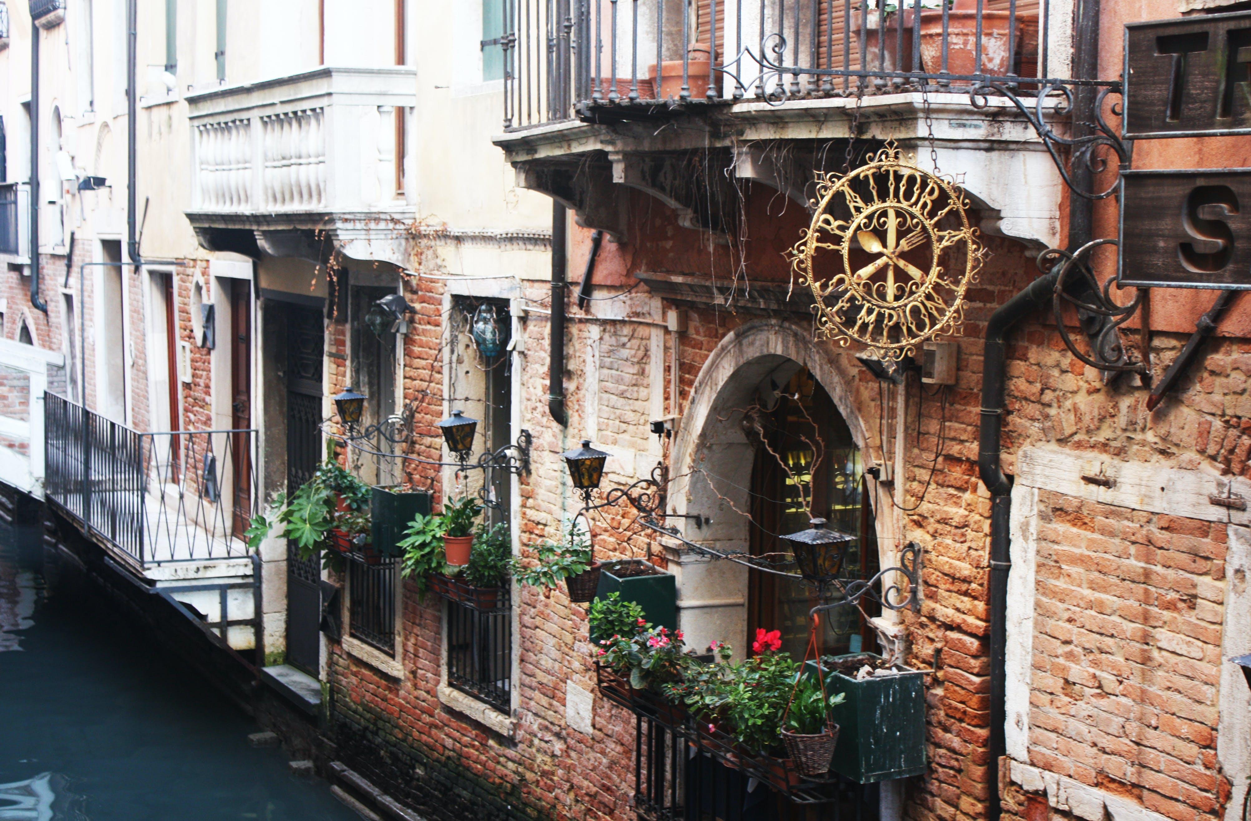 Free stock photo of romantic, street, flowers, hotel