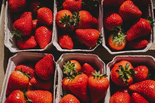 Ilmainen kuvapankkikuva tunnisteilla elintarvikkeiden bloggaaja, elintarvikkeiden tausta, jousi