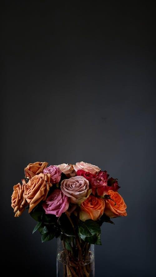 Bunch of tender multicolored roses in vase