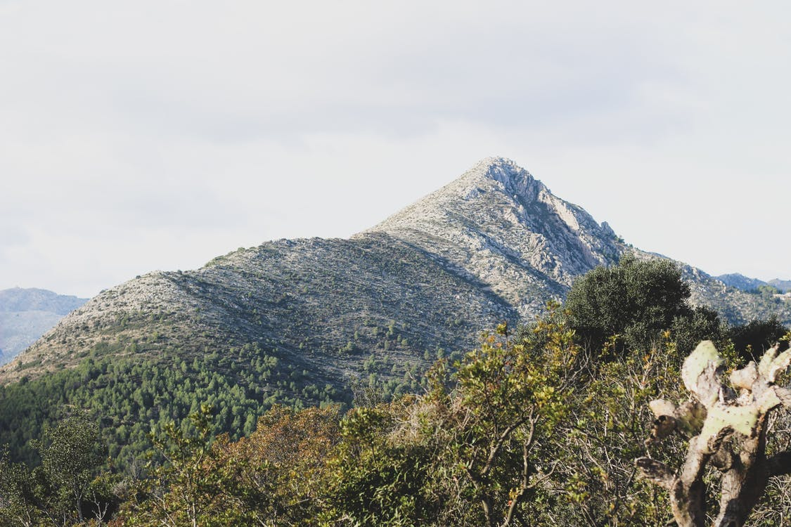 hora, idylický, kopec