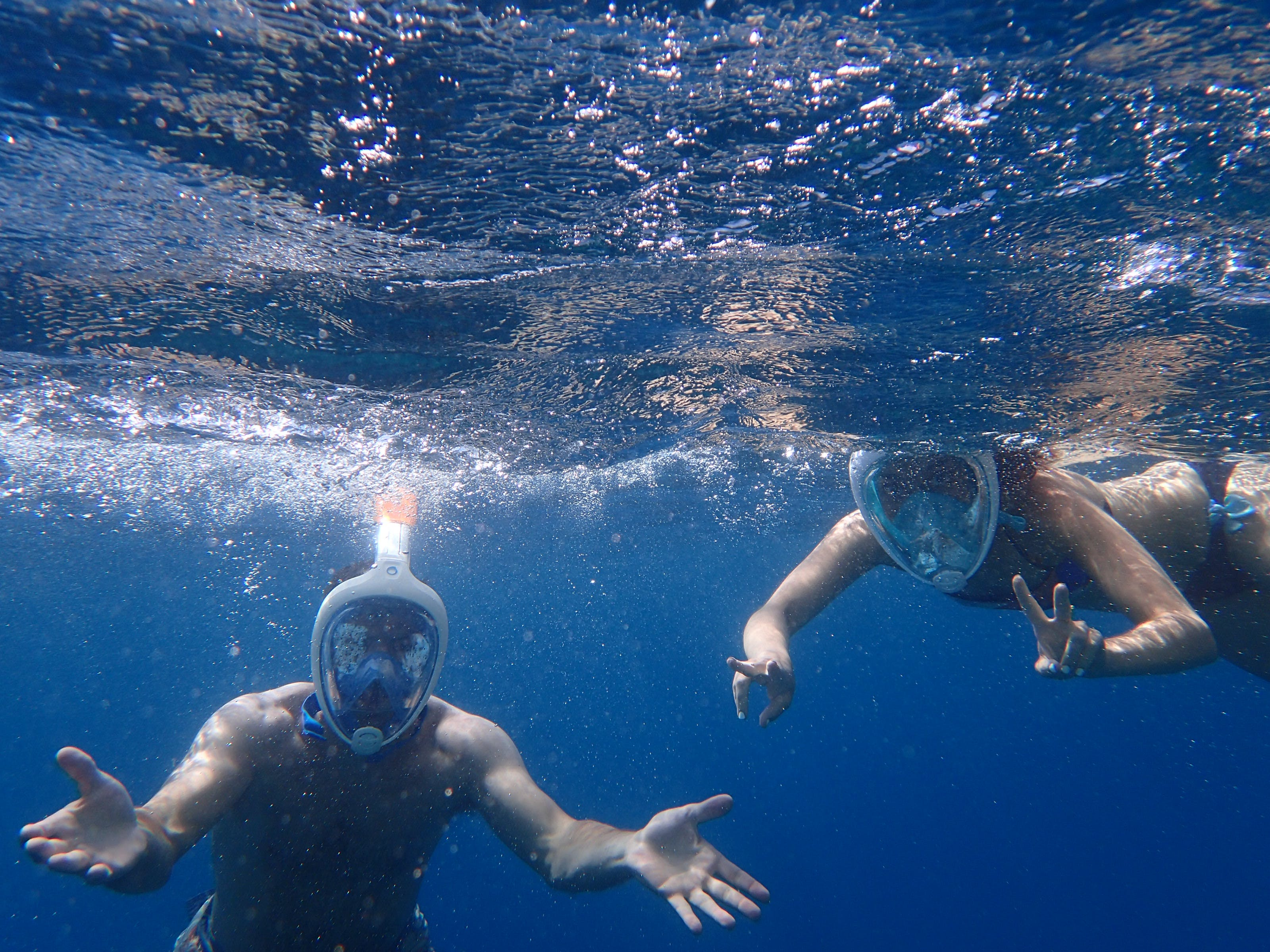 Photo of People Snorkeling Underwater