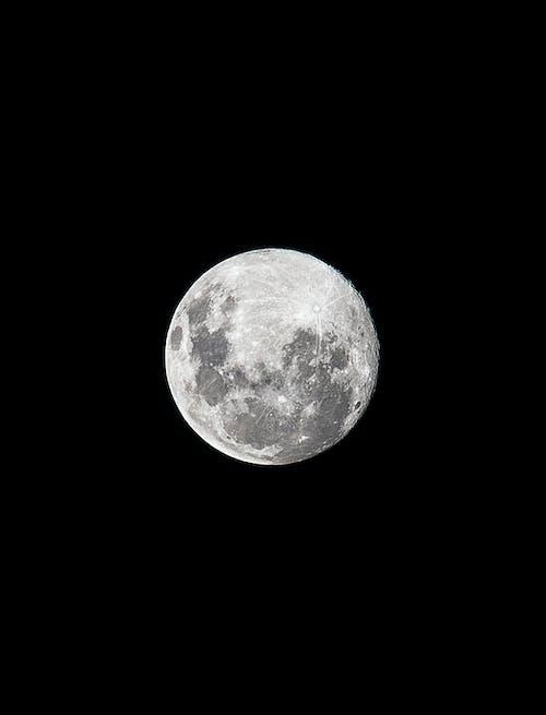 ブリッジ, 暗い空, 月の無料の写真素材