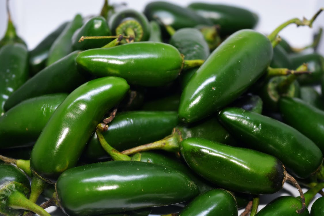 Free stock photo of chile, jalapenos, peppers