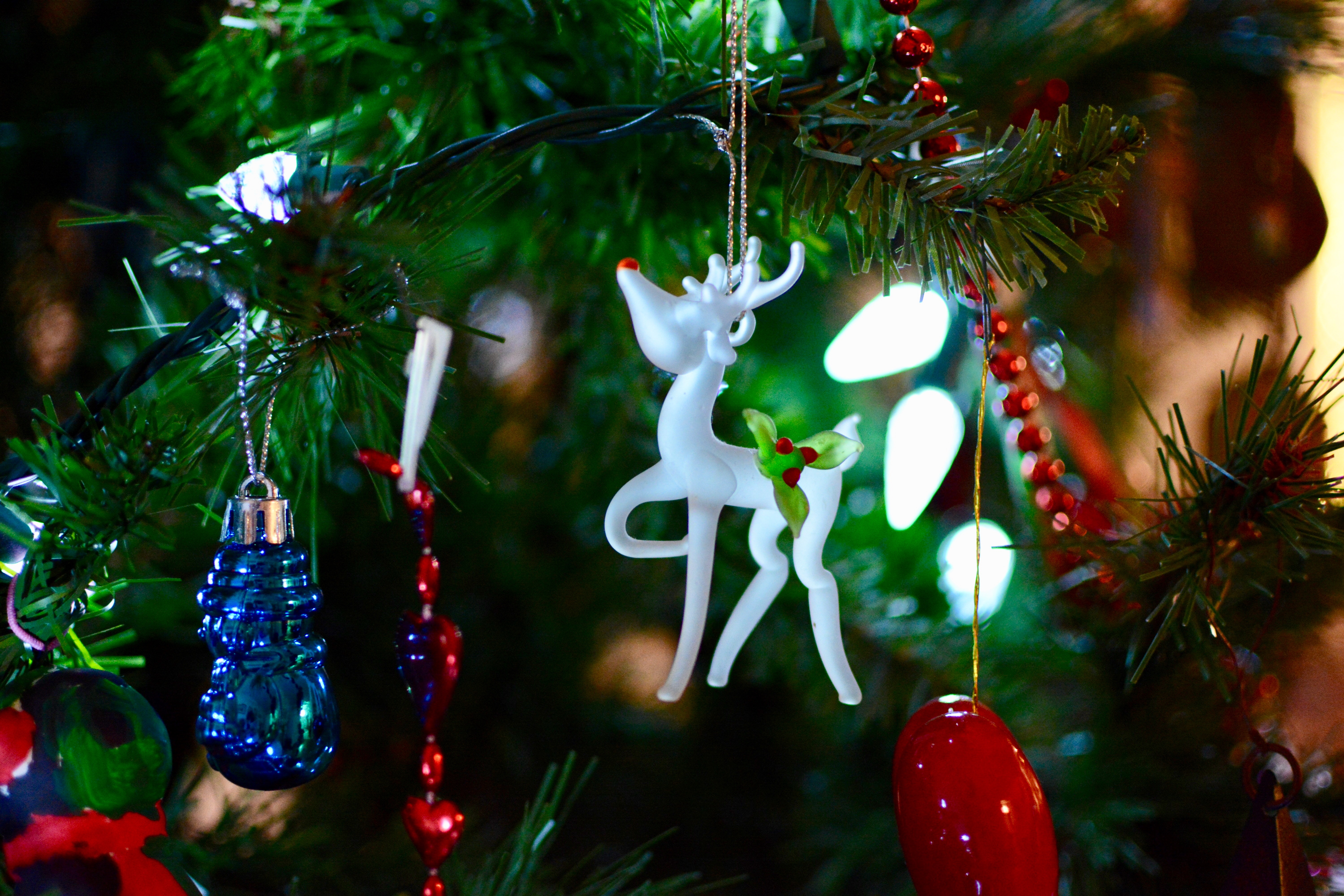 Free stock photos of christmas ornament · Pexels