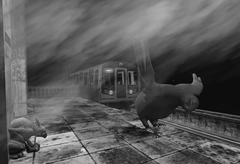 Free stock photo of pigeon, black and white, subway platform