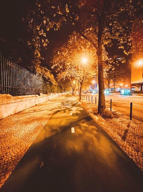 Free stock photo of bright lights, city at night, runner