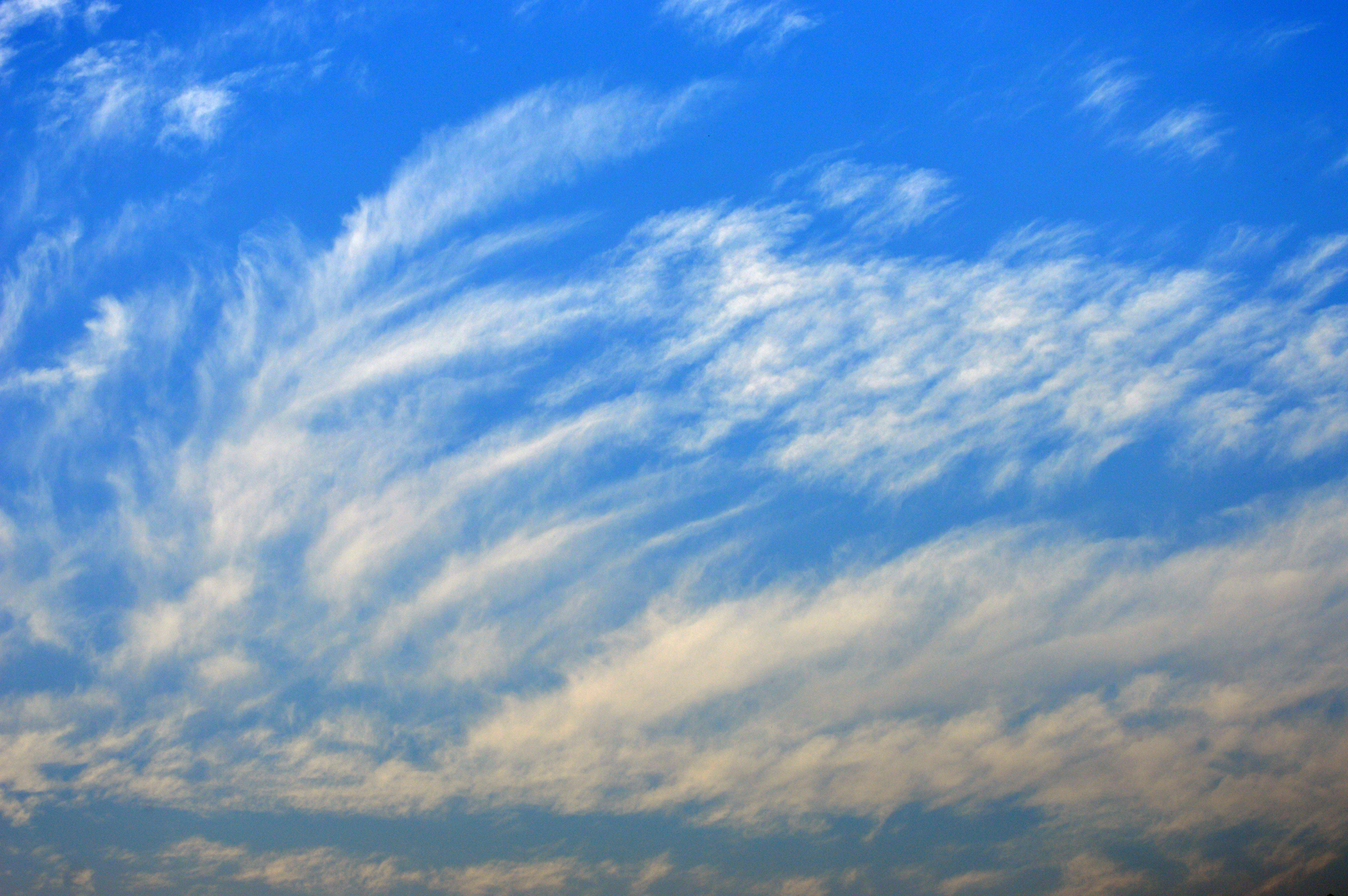 Free stock photo of blue sky, cloudy skies, cloudy sky, sky