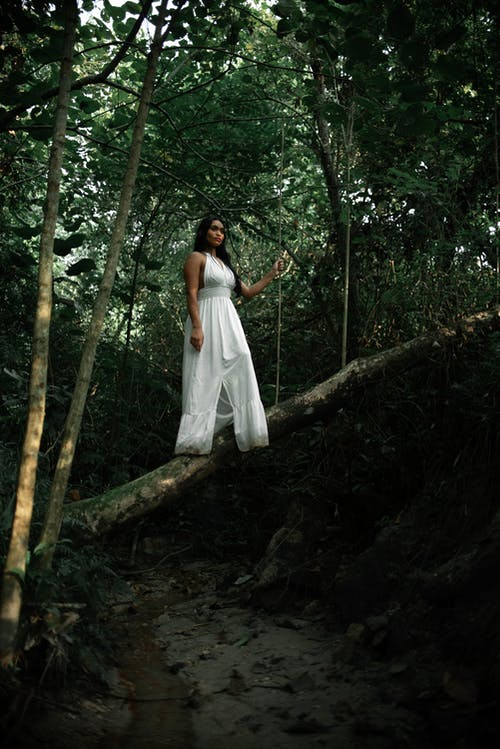 Woman in White Dress Standing on Tree Trunk