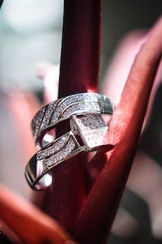 Macro Photography of Two Diamond Rings
