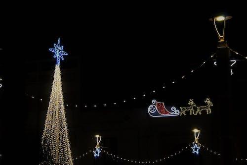 Noel süsü içeren Ücretsiz stok fotoğraf