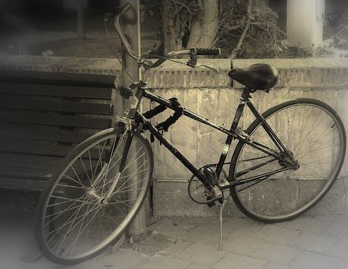 Gratis lagerfoto af cykel, sort og hvid, transport