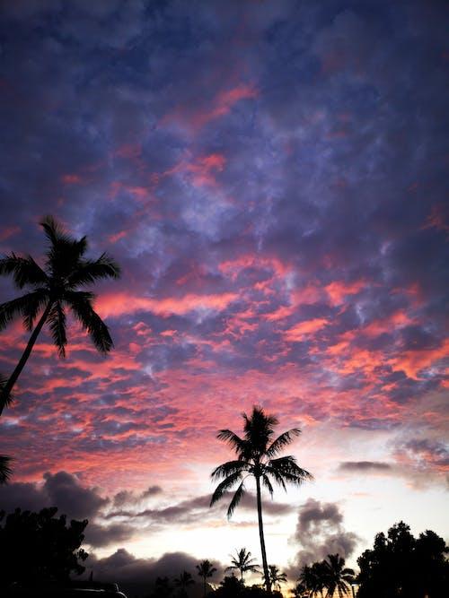 Fotos de stock gratuitas de Hawai, puesta de sol, viajar