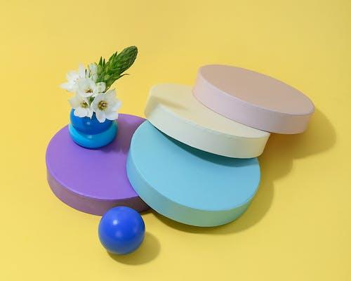 Photo of White Flower on Blue Round Vase