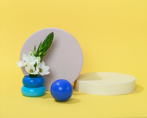 Photo of White Flowers on Blue Round Object