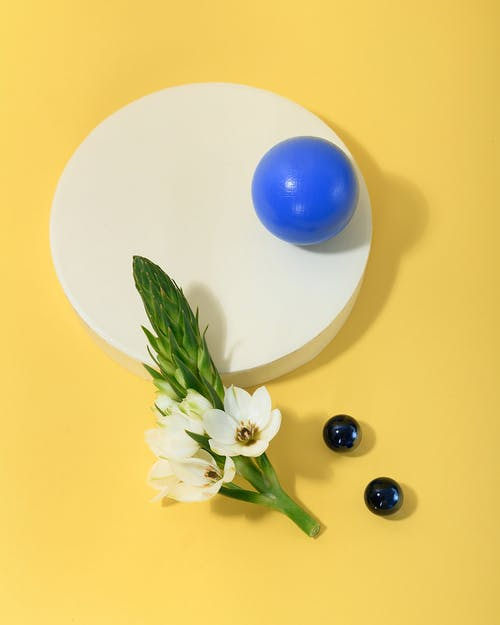 Photo of White Flowers Leaning on White Round Table