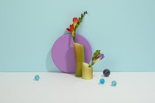 Photo of Flower on Light Blue Background