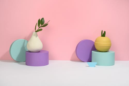 Photo of Succulent Plants on Different Kinds Of Vase