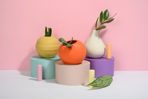 Photo of Succulent Plants on Ball-Shaped Pots