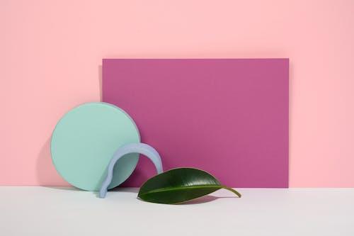Photo of Leaf on Light Pink Background