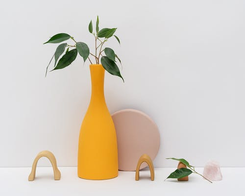 Photo of Green Leaves on Yellow Vase