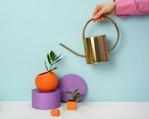 Photo of Person Holding Watering Can