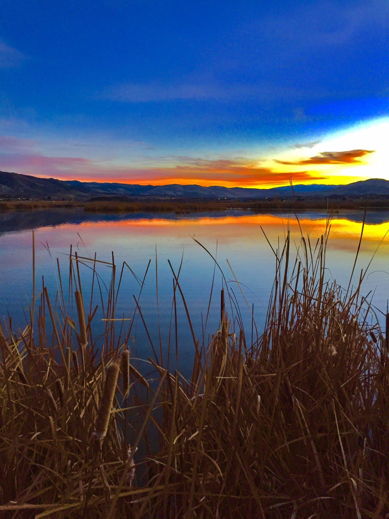 Free stock photo of reflections, Reno, sunset