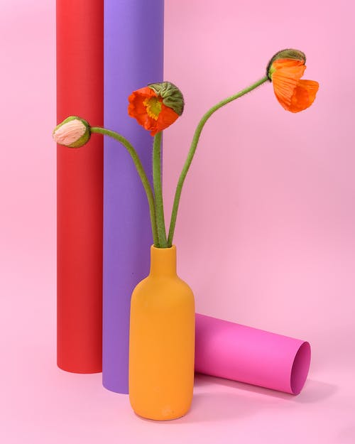 Photo off Poppy Flowers on Yellow Vase