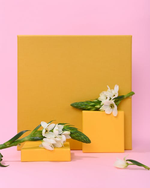 Photo of White Flowers on Top of Yellow Cardboards