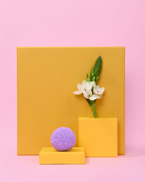 Photo of Flower on Top of Square Table