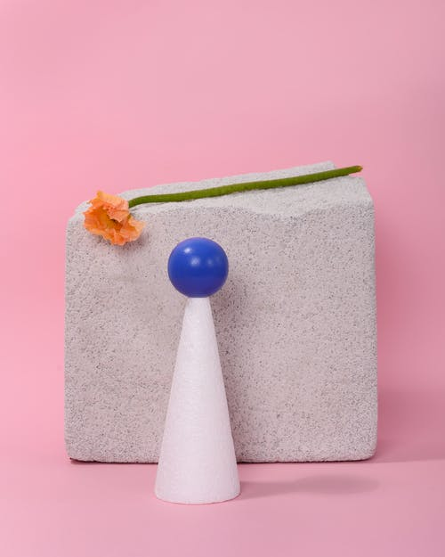 Photo of Flower on Top of Concrete Block