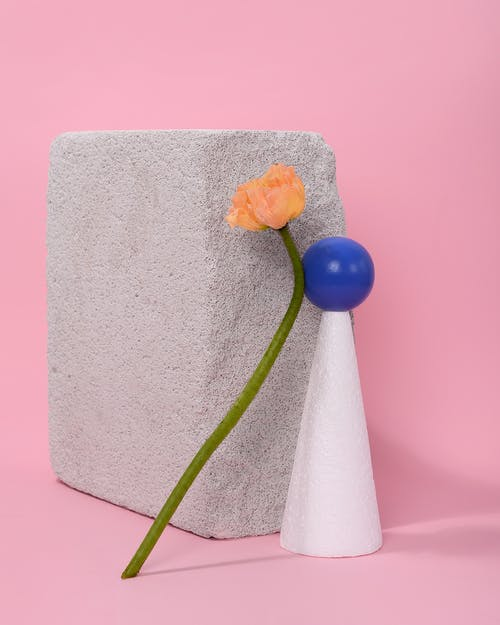 Photo of Poppr Flowers Leaning on Blue Ball