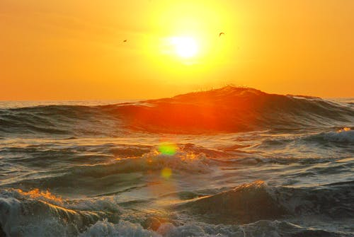 Photography of Ocean Wave during Golden Hour