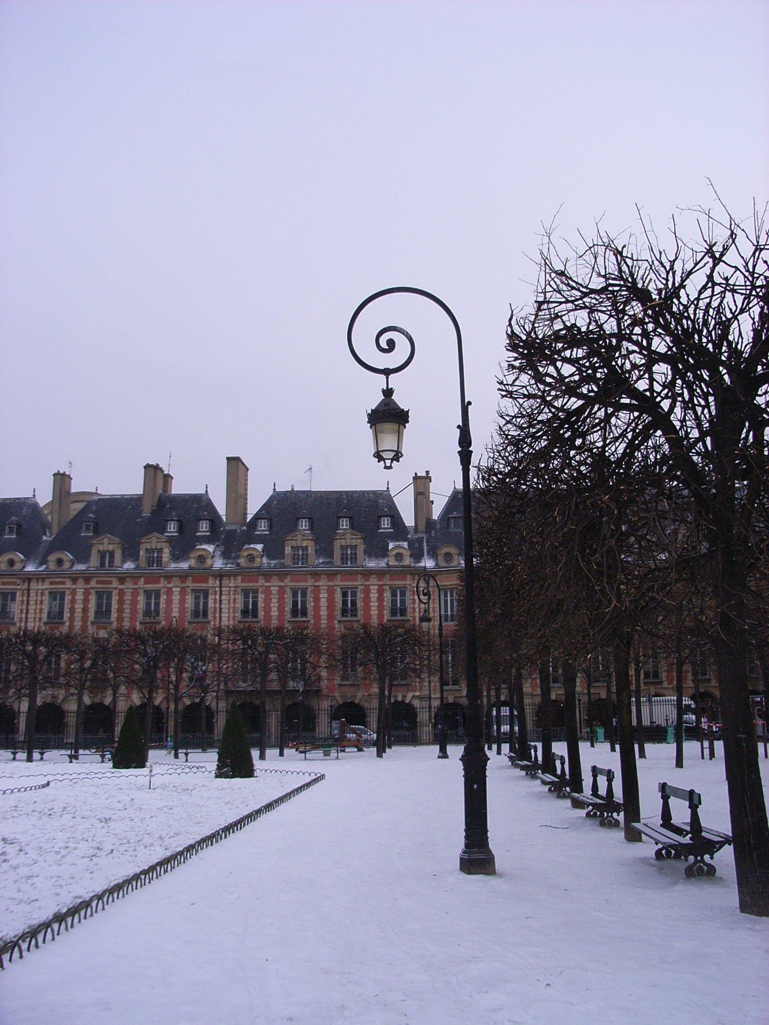 Free stock photo of empty street, france, paris, street